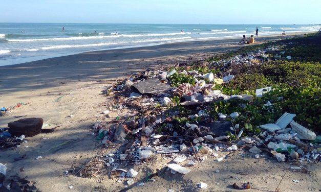 """PacWastePlus, un """"programme"""" de gestion des déchets dans le Pacifique"""